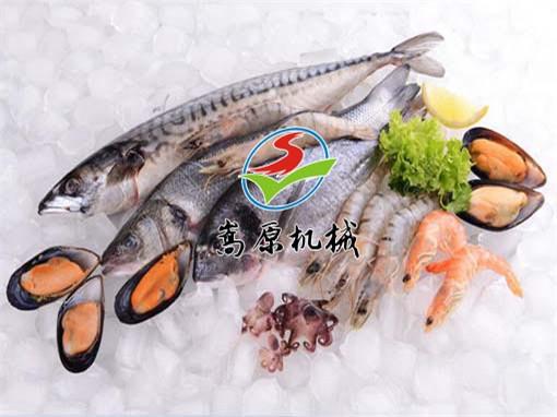 海虾烘干机