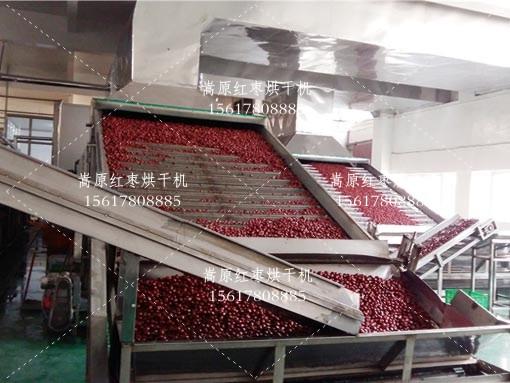网带红枣烘干机